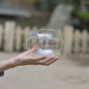 گلدان شیشه ای ساده تراریوم 11 سانتی متری (سایز 3)
