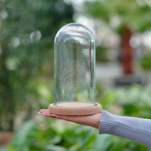 گلدان شیشه ای فلکسی کف چوب ارتفاع 22 سانتی متر