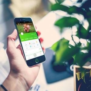 مای فلورت (دستگاه هوشمند نگهداری از گل و گیاه خانگی)