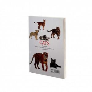 دانشنامه گربه سانان