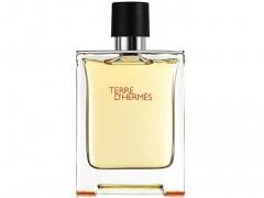 ادکلن هرمس تق هرمس | Hermes Terre d'Hermes 100 ml