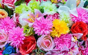 نجات از افسردگی با گلها