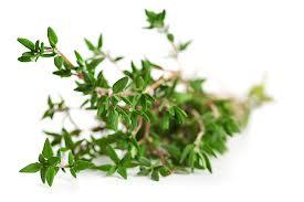چگونه جوش های مان را به داروهای گیاهی از بین ببریم؟