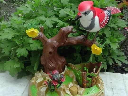 جامدادی رو میزی طرح پرنده آواز خوان