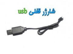 خرید شارژر قفلی مدل usb