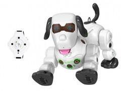 سگ رباتی با قابلیت کنترل از راه دور