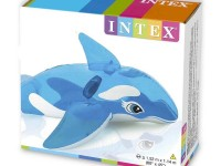 دلفین بادی (58523)