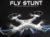 fly stunt.jpg