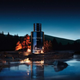 Dior Sauvage Parfum دیور ساوج پارفوم