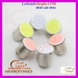 Coloured_COB Bulbs-LED-Smd.ir-xfxo.jpg