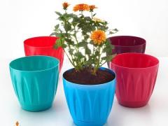 گلدان هلندی ایده آل پلاستیک