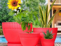 گلدان و زیر گلدان رز سایز 25 بیتا پلاستیک | پخش پلاستیک باغبانی.png