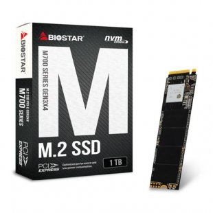 اس اس دی اینترنال بایوستار مدل M700 ظرفیت 1 ترابایت