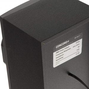پخش کننده خانگی کنکورد پلاس مدل SF-R219