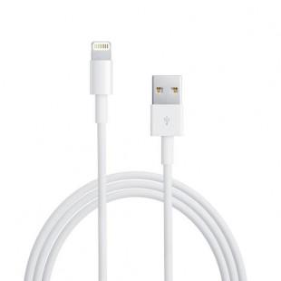 کابل USB به لایتنینگ اپل مدل MD819 طول 2 متر
