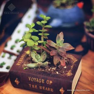 گلدان طرح کتاب