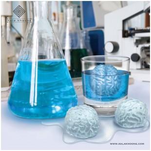 قالب یخ طرح مغز