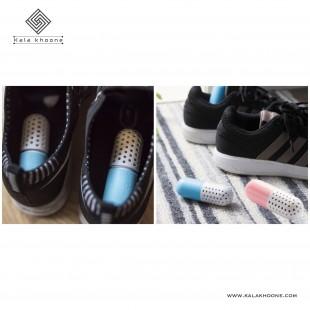 بوگیر کفش