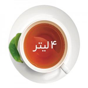 چای ساز میگل مدل TS301