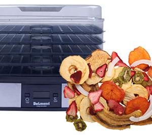 میوه خشک کن دلمونتی مدل DL190