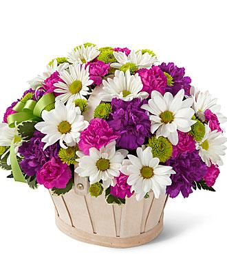 گل های زیبا و معنی آن ها برای هدیه دادن