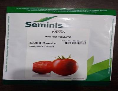 گوجه هیبرید بریویو سمینس