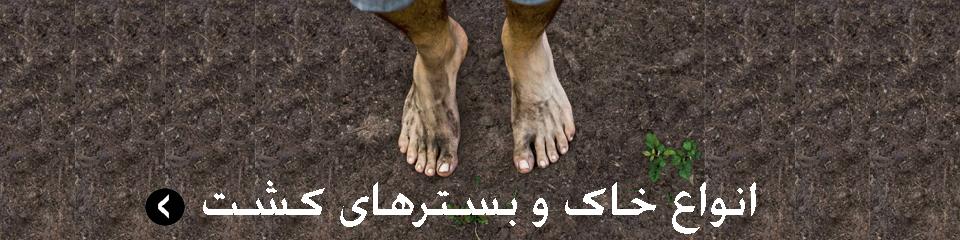 خاک و بسترکشت