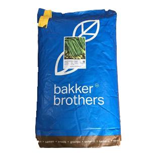 بذر لوبیا بیکر برادرز سان ری -  bakker brothers bean seed