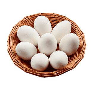 تخم اردک محلی بسته 2 عددی