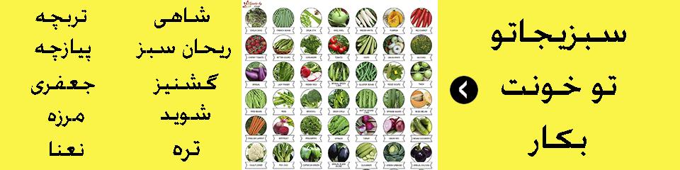 بذر سبزیجات خانگی