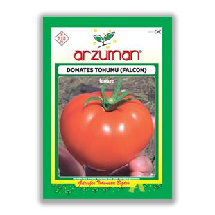 بذر گوجه فرنگي Falcon  آروزمان ترکیه - Arzuman
