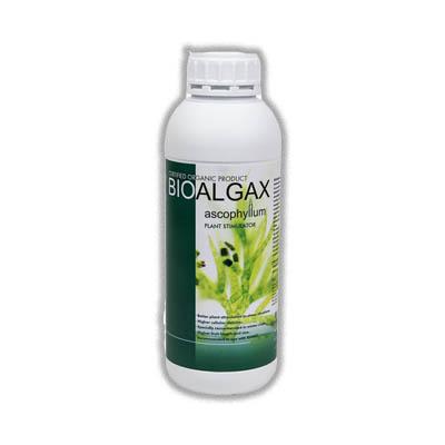 کود ارگانیک جلبک دریایی بیوآلجاکس كيميتك اسپانیا - تاثیر عالی در برابر استرس و تنش