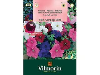 بذر گل اطلسی مخلوط ویلمورین