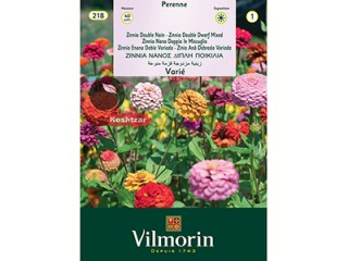 بذر گل آهار ویلمورین