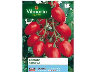 بذر گوجه روما ویلمورین
