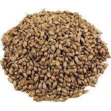 بذر درخت سیب میاندواب(100گرم)