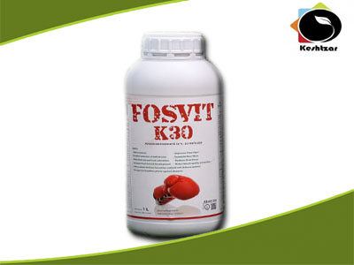 کود ارگانیک PK ویژه دوره گلدهی فوسویت کا سی Kimiteck