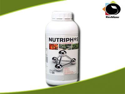 کود ارگانیک دوره گلدهی فسفر بالا + ویتامین  نوتریفوس Kimiteck