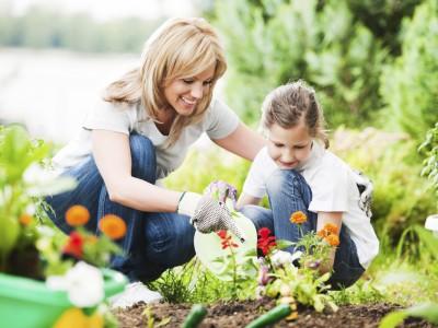 نکات مهم برای نگهداری گلهای بهاری