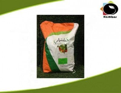 بذر شنبلیله پابلند کشتزار