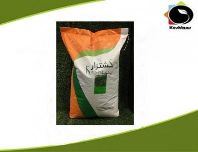 بذر شوید کشتزار 10 کیلویی