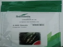 بذر هندوانه b32سمینس