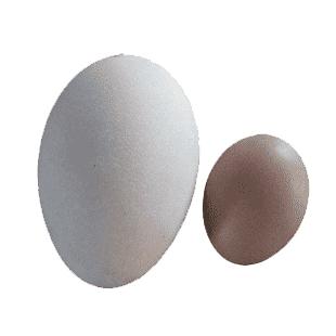 تخم غاز محلی بسته 2 عددی