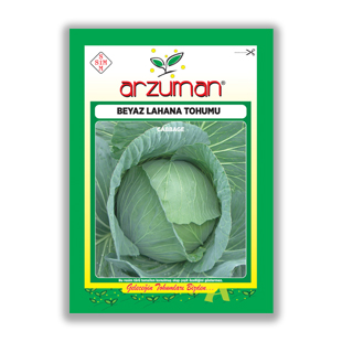 بذر كلم پيچ سبز آرزومان ترکیه - Arzuman