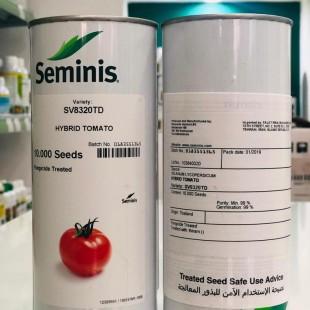 گوجه هیبرید 8320 سمینس