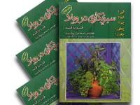 کتاب سبزیکاری در ویلا