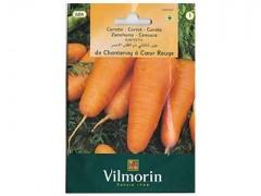 بذر هویج چانتانی کوتاه ویلمورین
