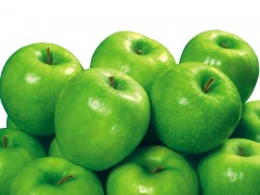 سیب سبز اصلاح شده بسیار پربار و خوش طعم