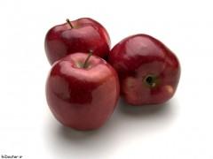 نهال سیب قرمز پربار استخوانی