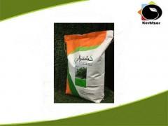 بذر ریحان سبز 10 کیلویی